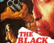 la-panthere-noire-affiche